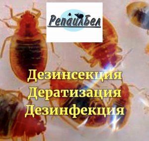 ООО РепаилБел